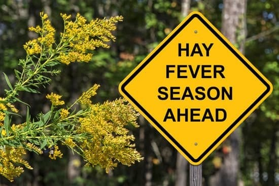 Hay Fever – Natural ways to help